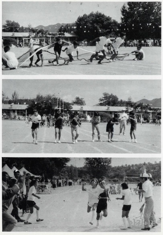 1984년 정안국민학교 운동회(1)