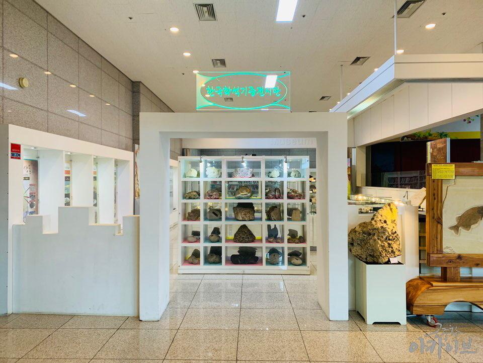 계룡산 자연사박물관 1층 한국 화석 기증 전시실 입구