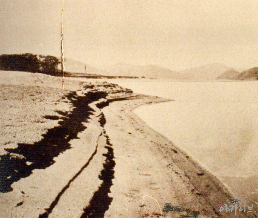 1950년대 중후반 금강의 모래사장