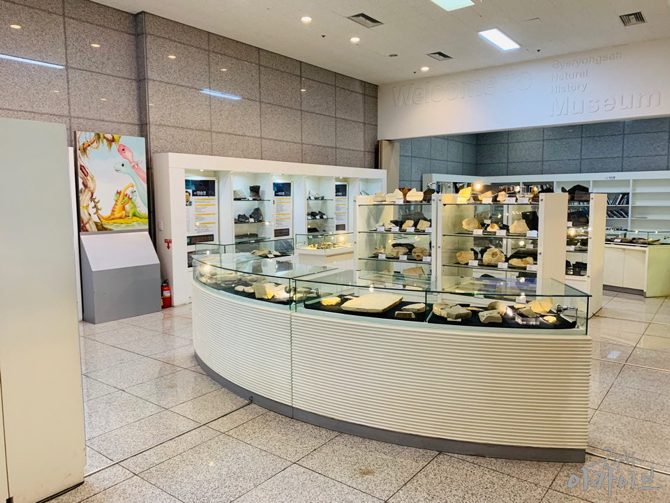 계룡산 자연사박물관 1층 한국 화석 기증 전시실 내부