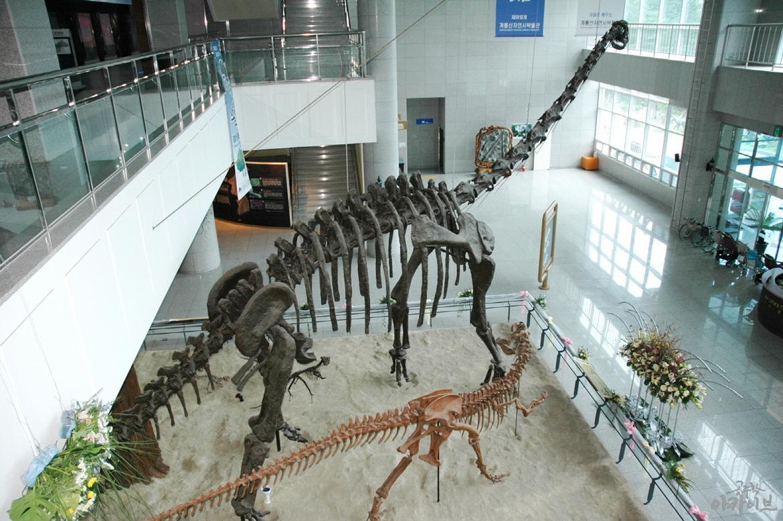 계룡산 자연사박물관 1층 공룡홀 내부(1)