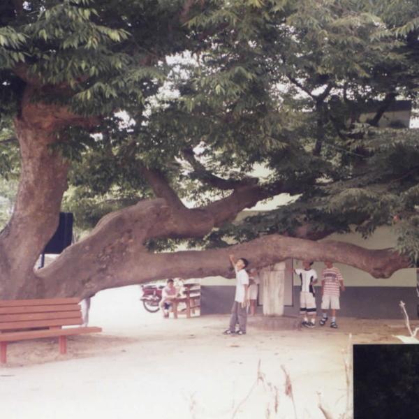 1999년 정안초등학교 향토순례(4)